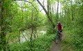 Single Trail im Tal der Liebe bei Sławków