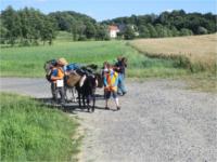 Eselwandern