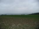 Die ausgedehnten Kalkmagerrasen werden von Landwirten im Rahmen des Vertragsnaturschutzes offen gehalten.