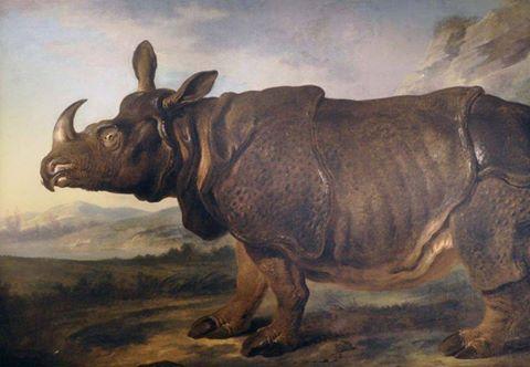 Quelle: Museum für Naturkunde Chemnitz