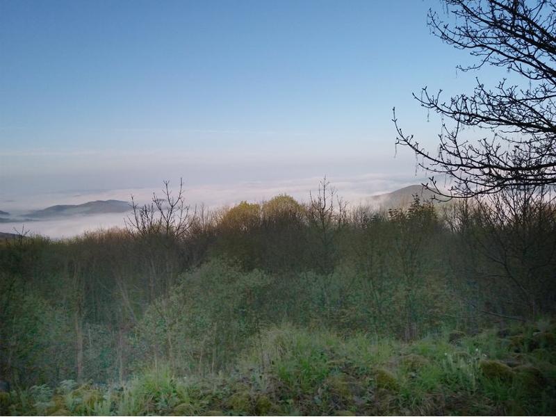 Der Öchsen, Hausberg von Vacha, ist seit der Jungsteinzeit besiedelt. Hier befand sich ein keltisches Oppidum von etwa 30 Hektar Ausdehnung.