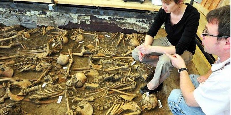 Die 47 Skelette von Soldaten , die sich in dem Massengrab von 1632 befanden, wurden in Halle untersucht.
