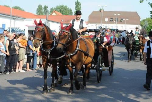 Pferdemarkt 2010